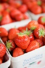 miriam+preis-strawberries-768