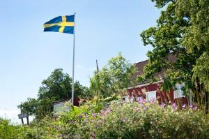 sara+ingman-summer+house-2179